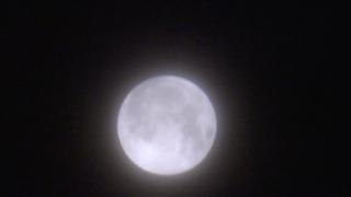 Screen Shot 2021-05-26 at 3.58.56 AM.png