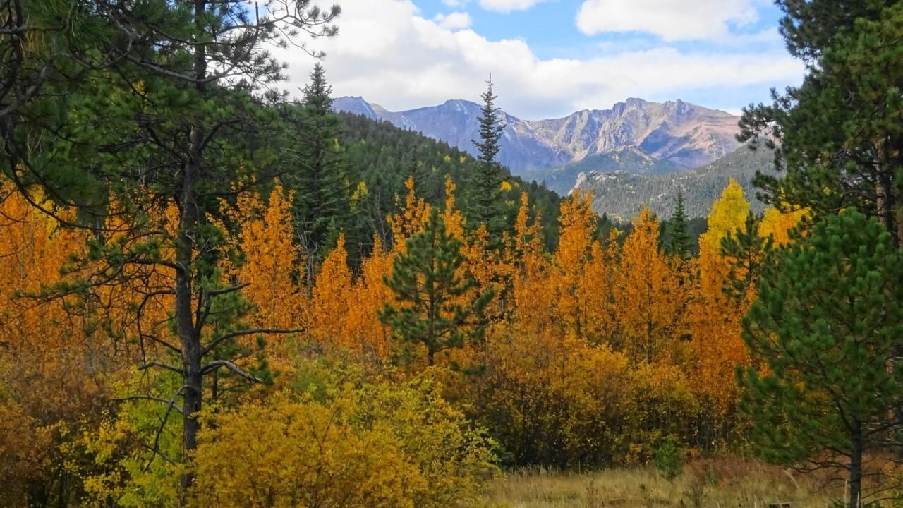 Linda Michel Pikes Peak Highway