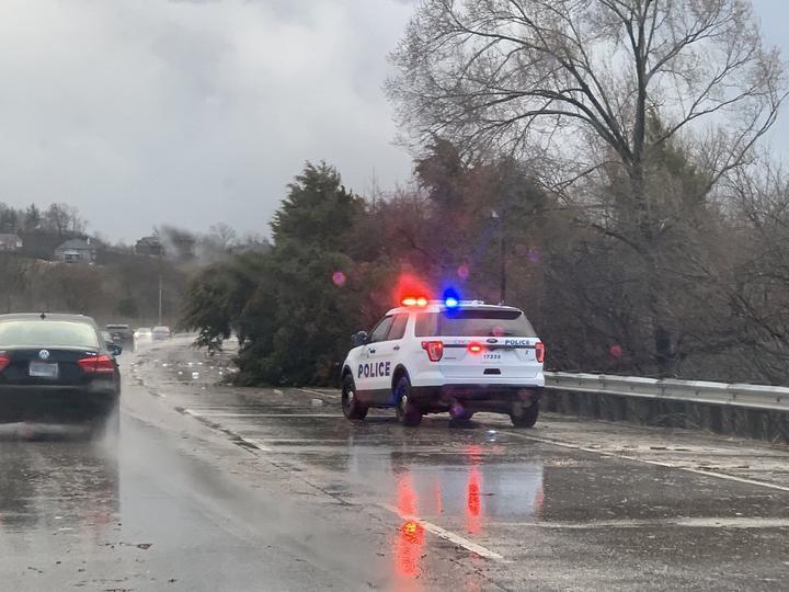 Storm_031419_Tree_down_Columbia_Parkway_Andrew_Mulvone .jpg