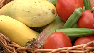 Gardeners donate pounds of produce to Harvesters