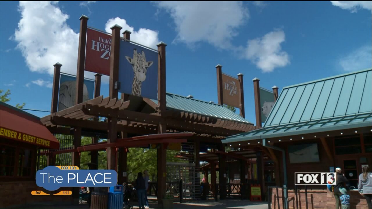 You only have 3 more chances to take advantage of Family Night at Utah's HogleZoo