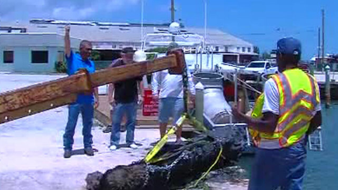 Spanish cannon from 1715 raised from the ocean off Fort Pierce
