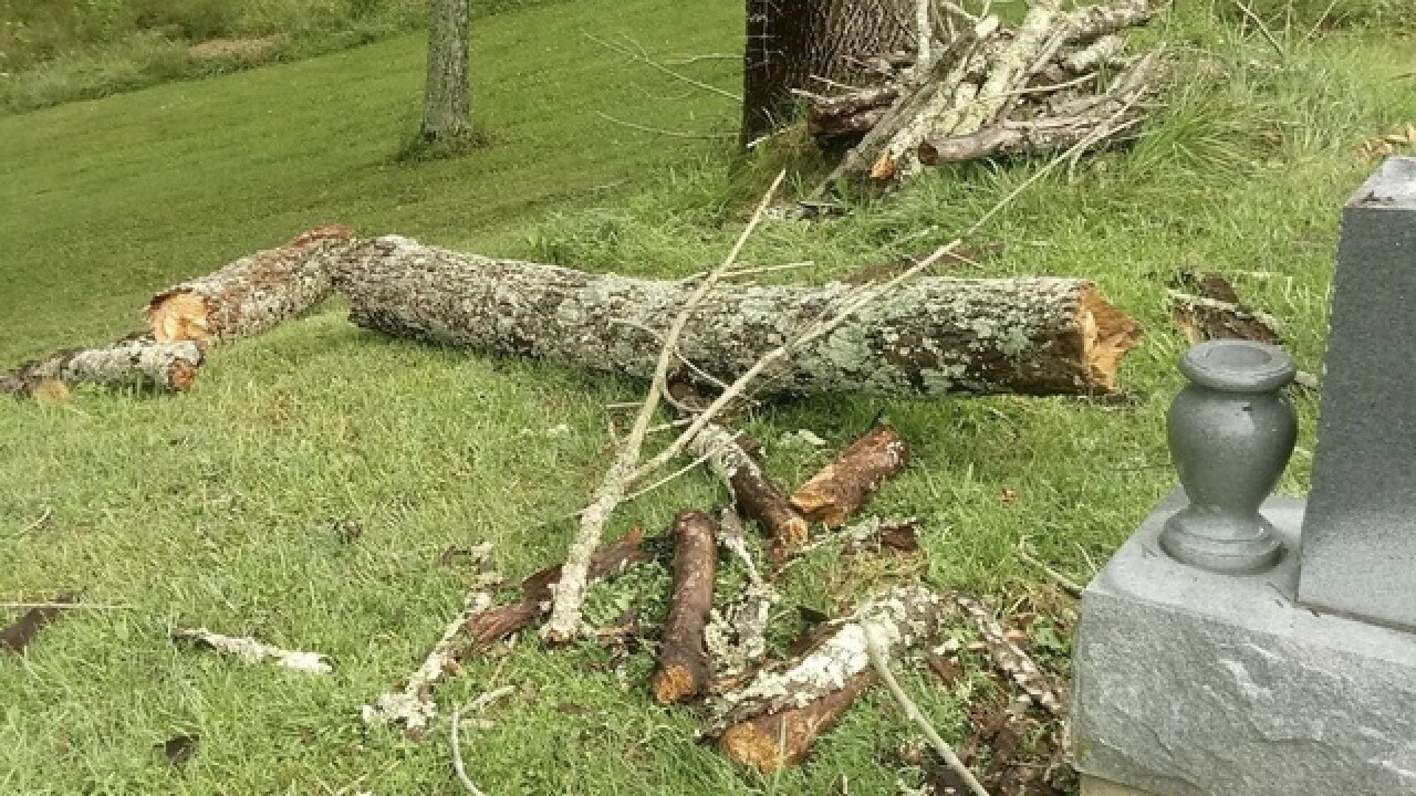 Storms bring down tree limbs at Goshen Cemetery