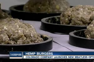 Blazing hot: Colorado company makes burger from hemp. And no, it won't get you high