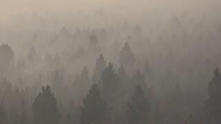 Wildfire Smoke-Public Health
