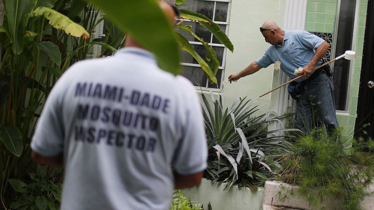 Zika diagnostics test given emergency approval by FDA
