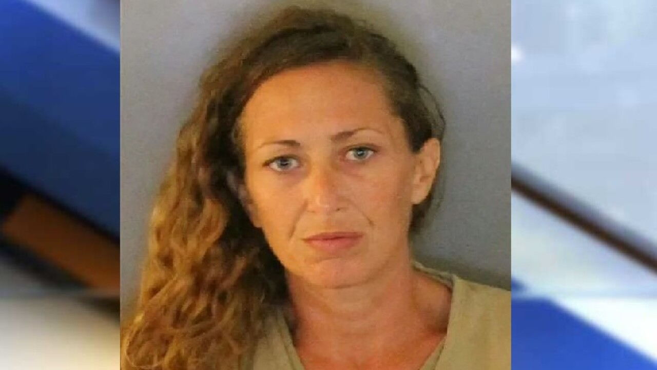 Florida woman arrested after hiding in Big Lots ceiling for hours
