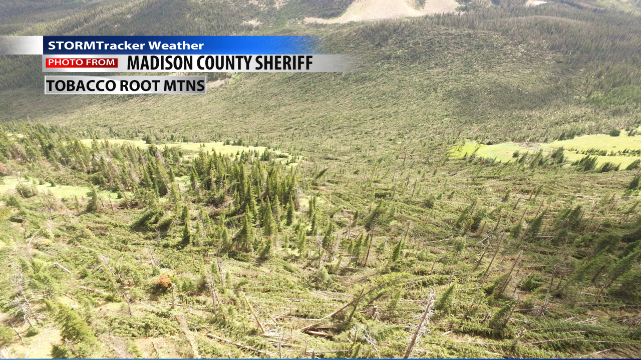 Microburst damage in the Tobacco Root mountains Sunday
