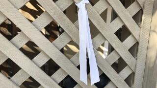 Orcutt white ribbons.jpeg