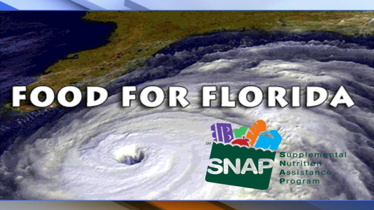 Hurricane Irma: Florida Disaster SNAP benefits guide