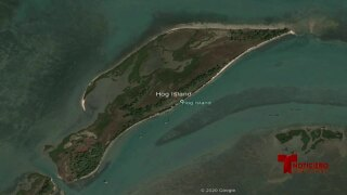 hog island 0803.jpg