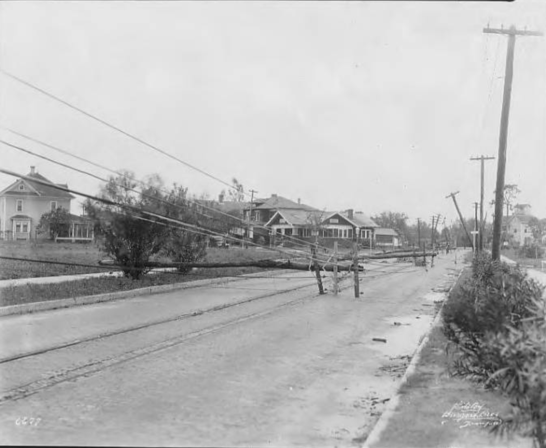 Photograph showing aftermath of hurricane on South Delaware Avenue.png