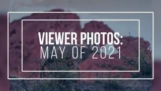 Viewer Photos: May