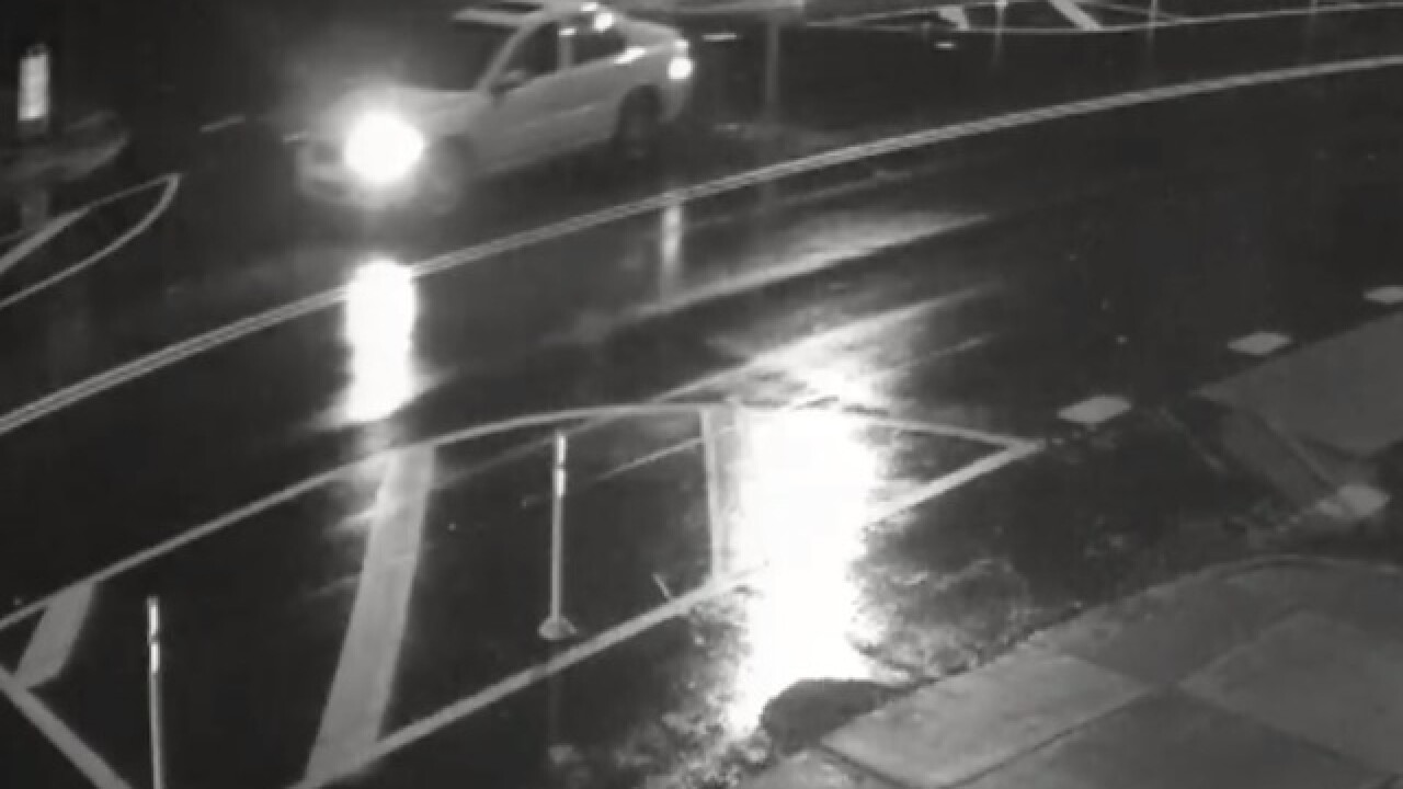 Police seek information on fatal hit-and-run