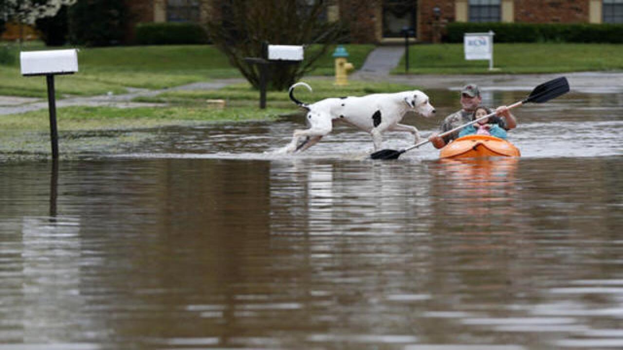 Photos: Louisiana devastated by heavy rains