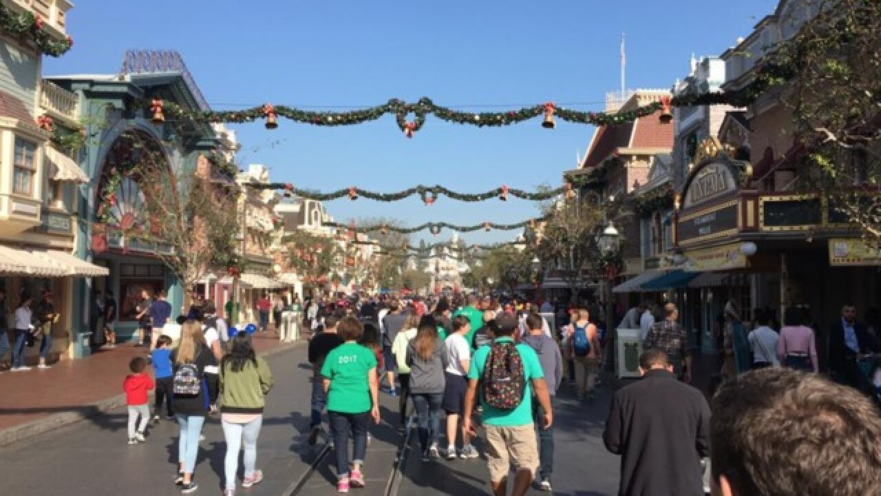 Power outage hits Disneyland, some rides closed