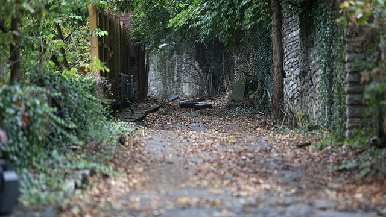 Fallen through the cracks: How some are working to save our alleys and steps