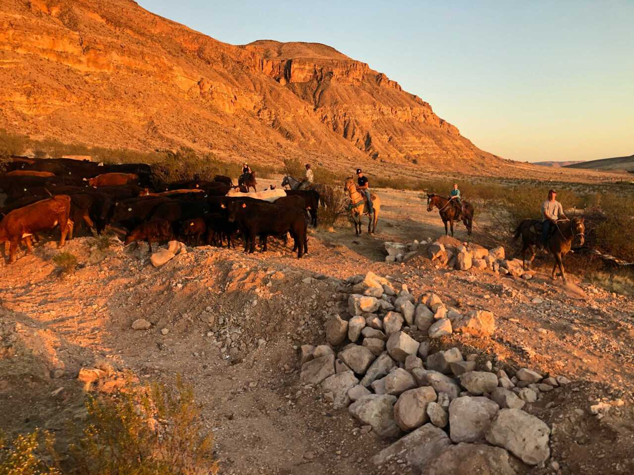 Southern Utah Farm