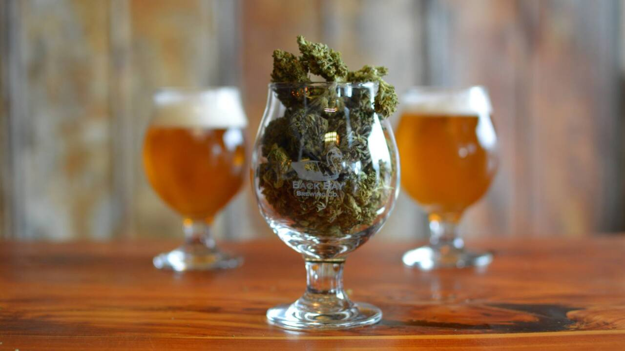 Back Bay Brewing releases CBD-infused beer