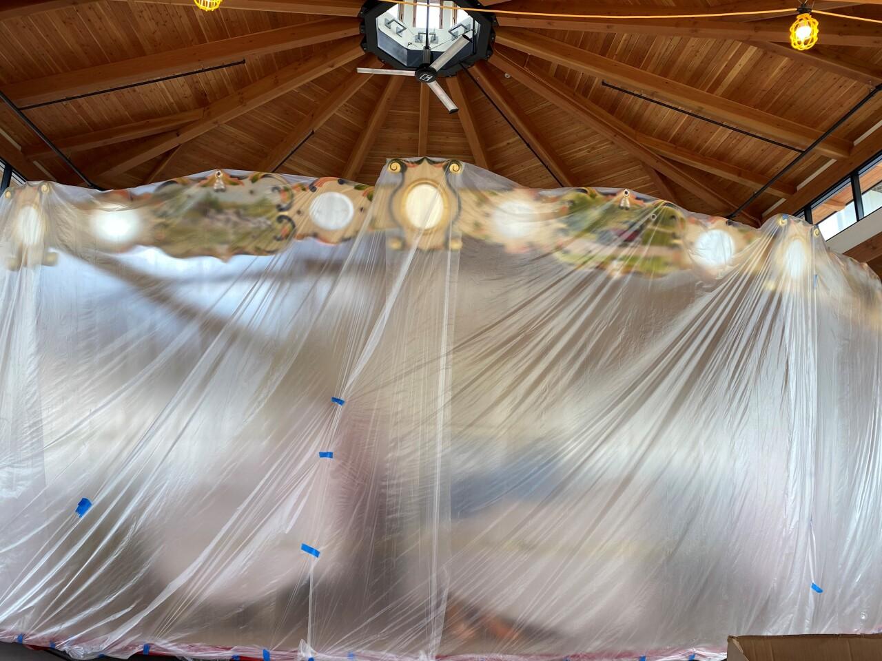 carousel dust cover.jpg