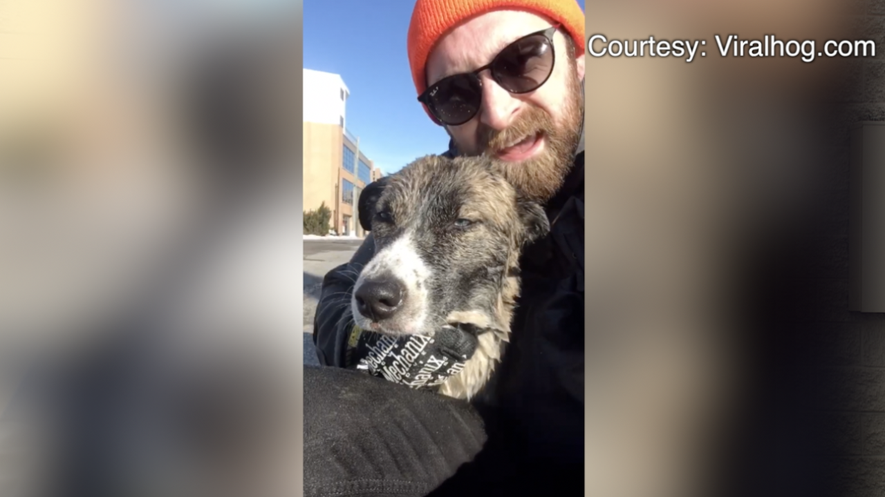 Austin Russell Saved Dog