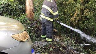 Vegetation fire SLO.jpg