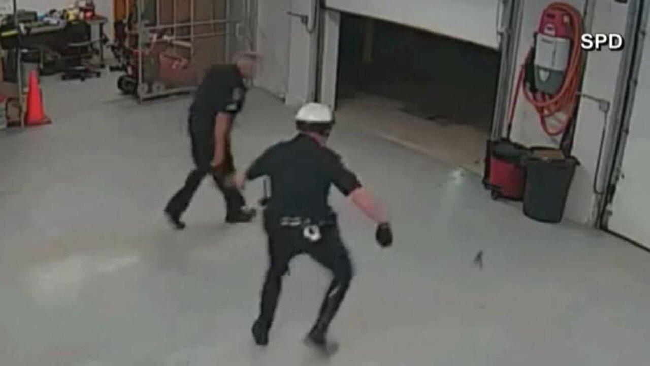 WPTV-POLICE-SQUIRREL-.jpg