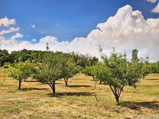 Mountain paradise for sale in Julian