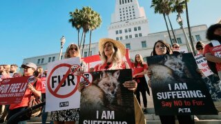 California becomes first state to ban fur products