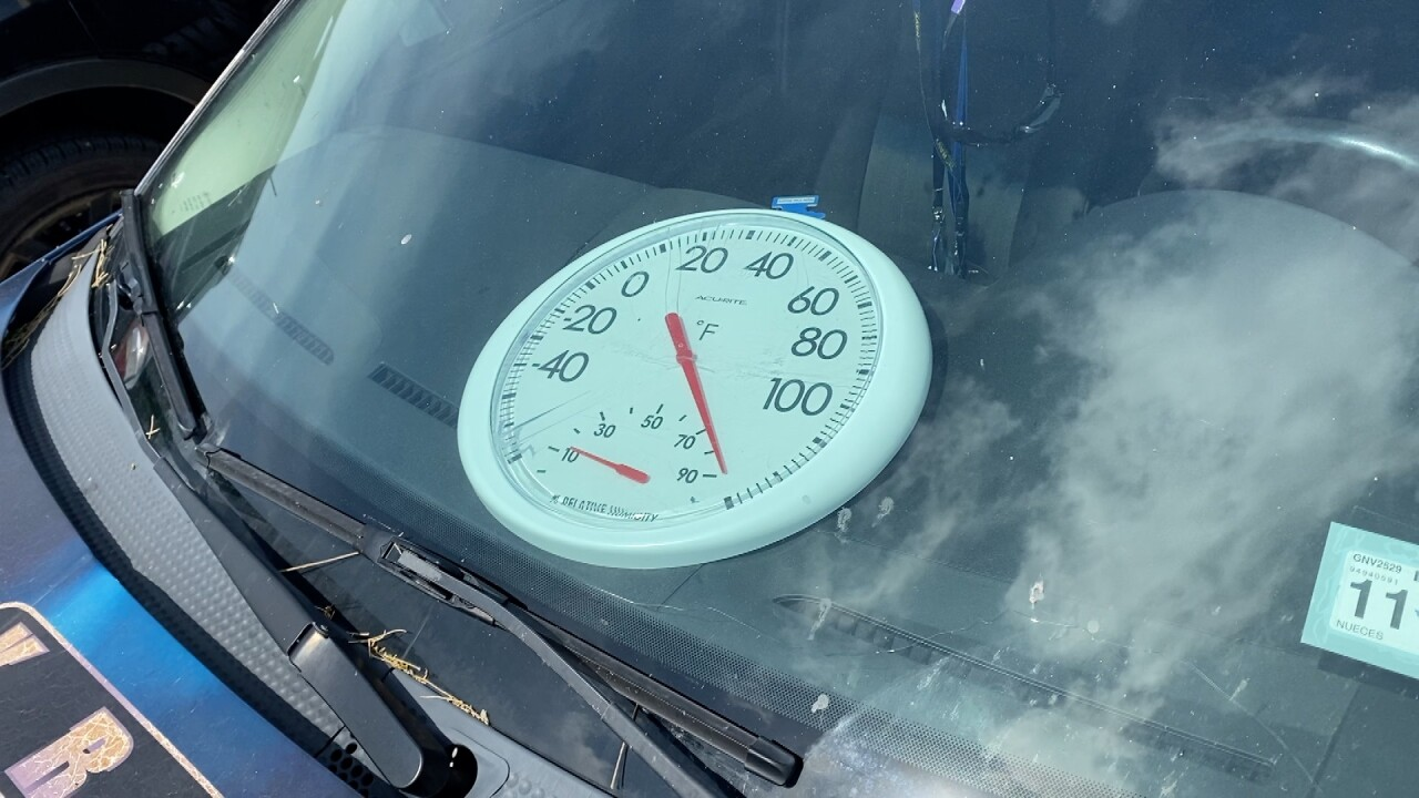 Hot car thermometer.jpg