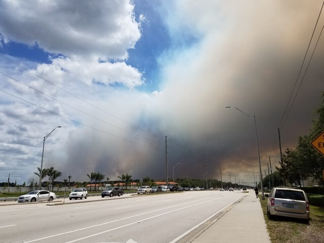 Fires burning in Collier County Photos
