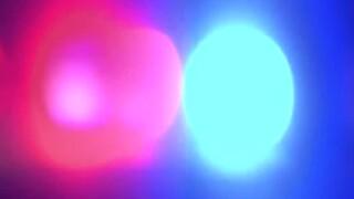 wptv-police-generic-police-lights.jpg