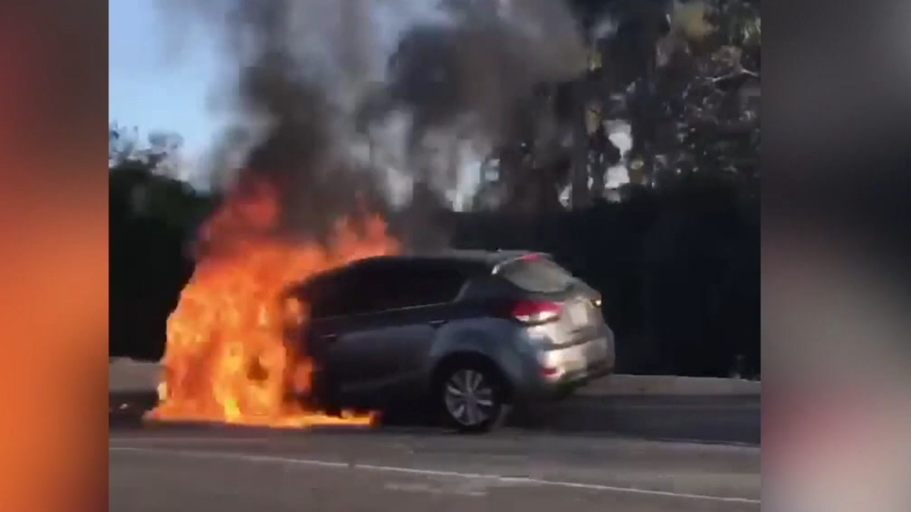 Should more Kia vehicles be recalled for fire risk?
