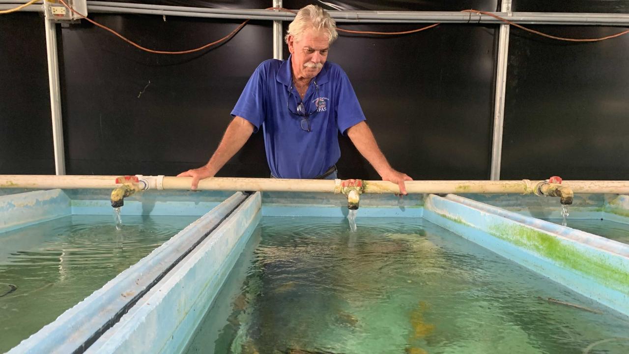 Tropical Aquaculture lab.png