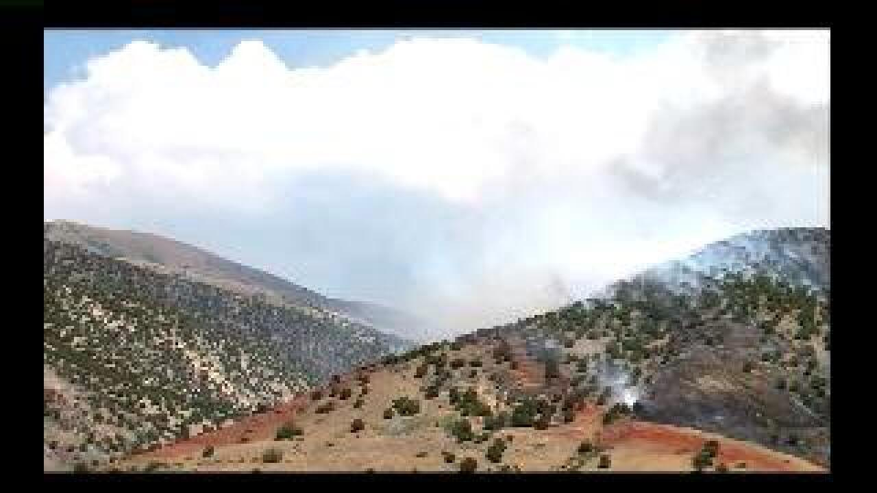 Fire crews hampered by wind in Patch Springs fire