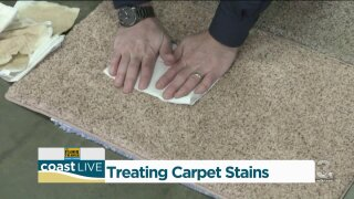 Advice for treating carpet stains