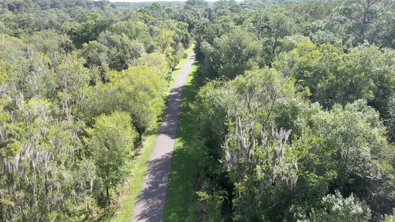 Walking Club: Exploring the Oldsmar Trail from Cypress Forest Recreation Center