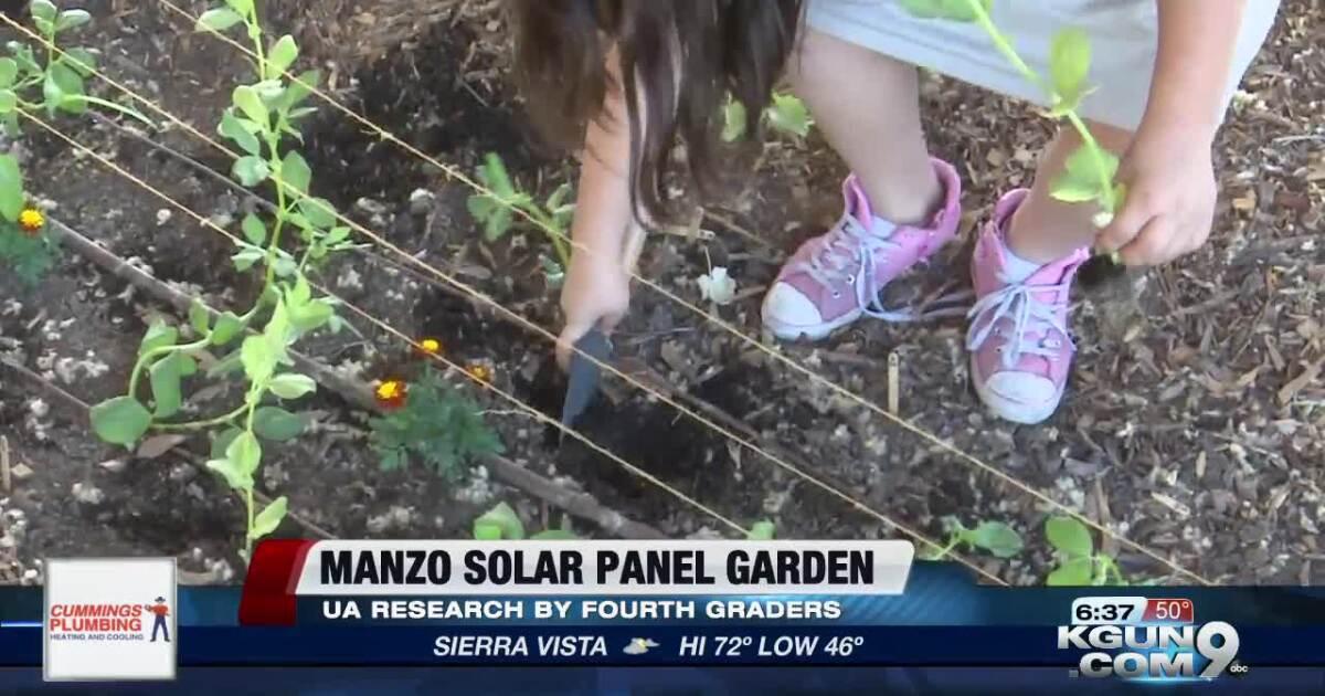 TUSD, UArizona team up for solar panel garden