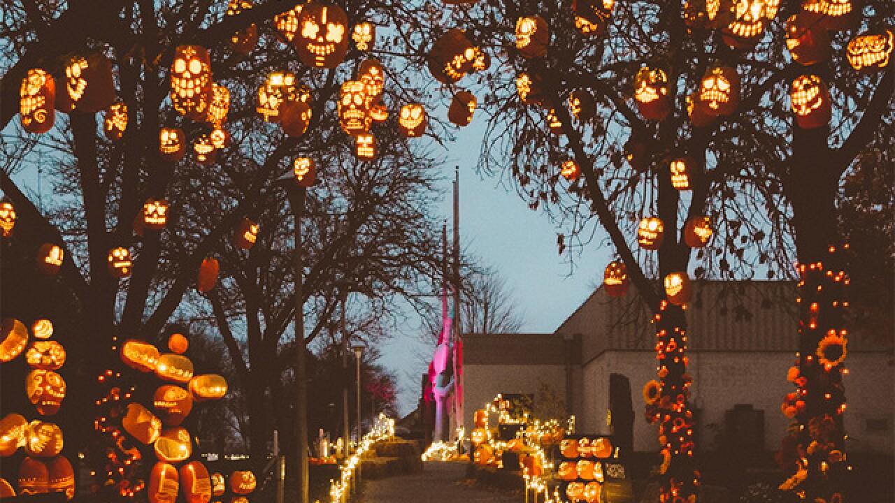 Over 3,000 hand-carved pumpkins light up this Denver area Halloween