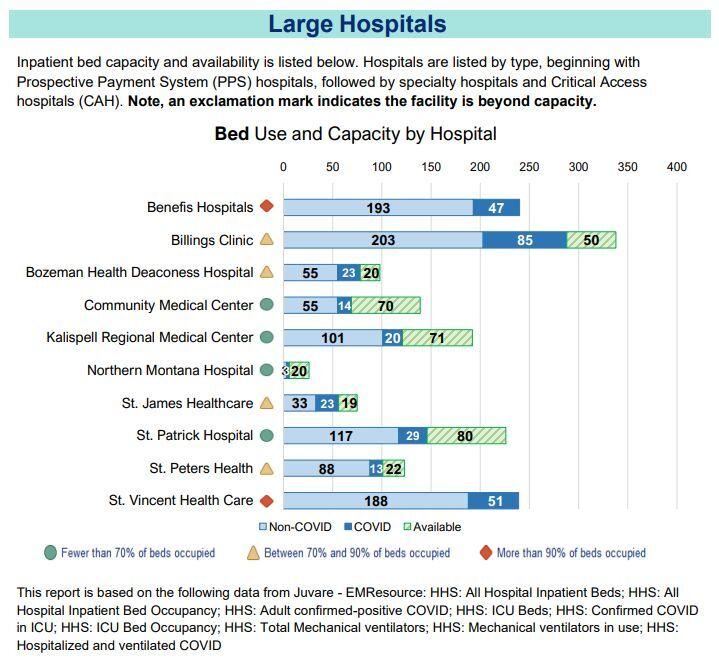 Hospital Capacity as of November 20