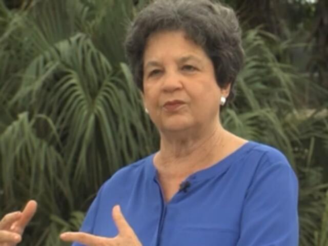 Rep. Lois Frankel (file photo)