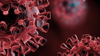 Michigan Coronavirus Update