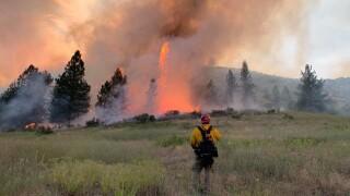 Crews battling wildfire near Hot Springs (July 21, 2020)