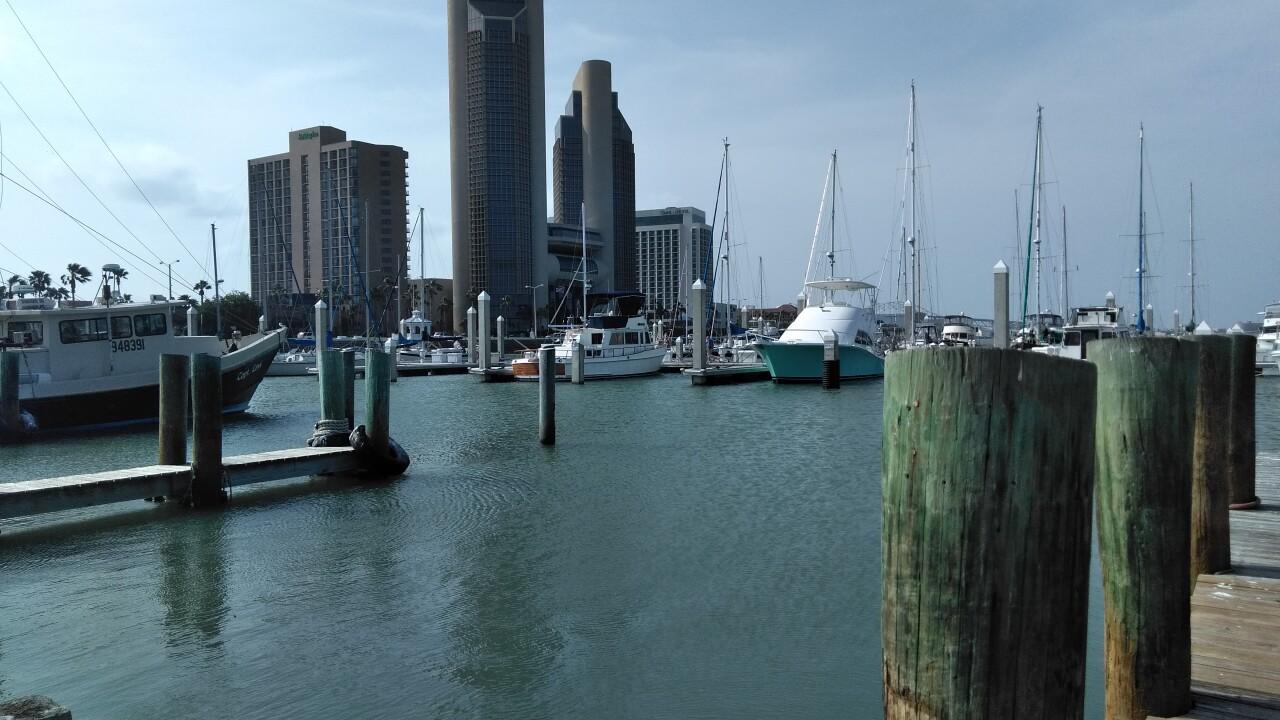 Bayfront 2.jpg