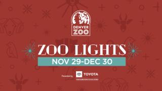 denver-zoo-lights-2019.png