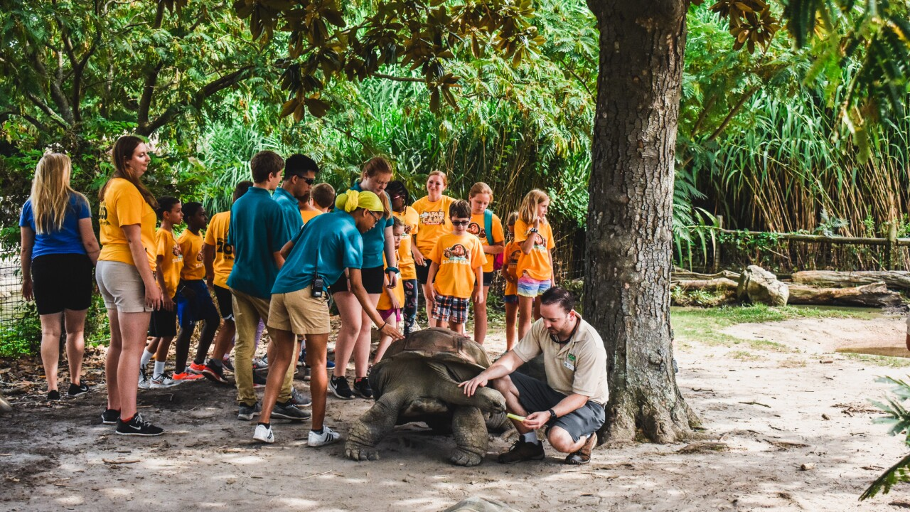 School's Out Safari Camps at the Virginia Zoo