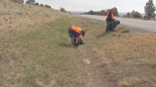 Great American Cleanup.jpg