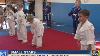 Small Stars: 'Little Dragons' learn integrity in martial arts class