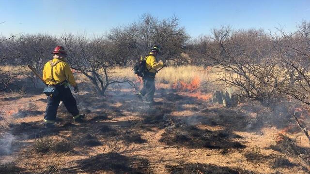 GV Fire battling 50 acre fire