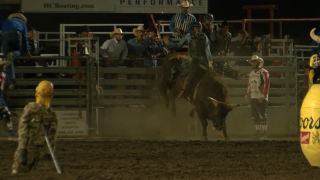 Five Montanans lead after first night at Last Chance Stampede